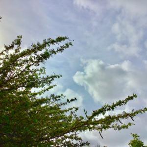 白い日曜日〜♡~05.23