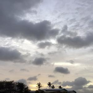 優しい夕方…☆~8.31 【雨上がり】
