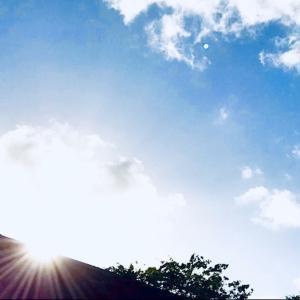 眩しい一日でした~☆~9.18/19【南カリブ海アルバ島】