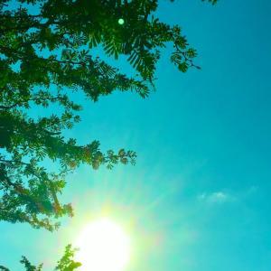 陽が昇り小鳥が歌い、日が沈みそして月が詠う~☆~10.19【10月18日撮影】