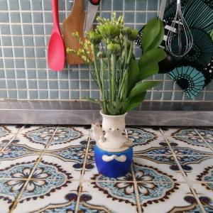 お花のサブスク「bloomee(ブルーミー)」の公式アンバサダーになりました