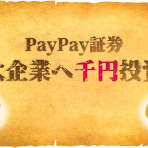 【初級用口座】千円単位で取引するPayPay証券!その有効的な使い方