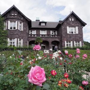旧古河庭園の秋薔薇を楽しむ。
