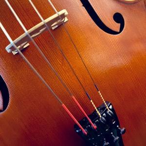 チェロの「弦選び」