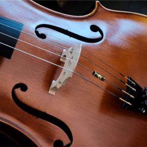 エヴァピラッツィ・ゴールドで全ての弦を揃える