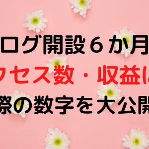 【報告】ブログ開設6か月目のアクセス数・収益は?実際の数字を大公開!
