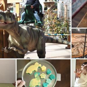 【恐竜好きの子供向け】イベントやおもちゃ、手作りできるもの色々まとめてみた