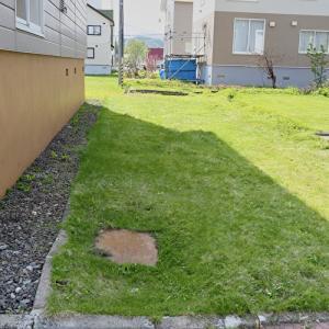 我が家の汚庭を公開。ゴミの片付けに400万円?