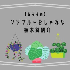 シンプルなものからおしゃれなものまで!安い植木鉢を紹介します