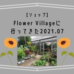 ビザールプランツも豊富!FlowerVillageに行ってきました(2021/07)