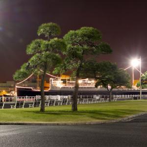 【横浜の夜景/元町・中華街エリア】夜の山下公園