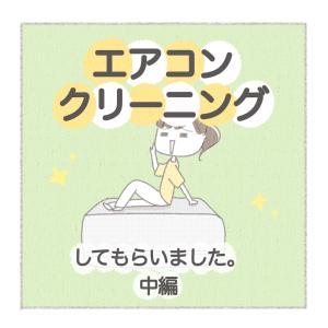 エアコンクリーニングレポー中編ー