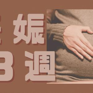 妊娠13週のお腹ってどのくらい出る?実際の写真とつわり症状の変化