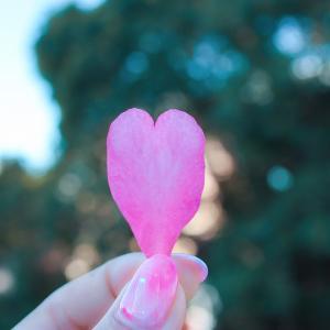 子宮頚部がん検診・乳がんのエコー検査って痛いの?体験した感想まとめ!