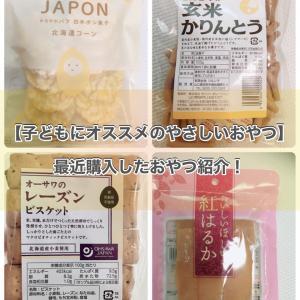 最近の購入おやつ4種ご紹介!グルテンフリー、マクロビ、油・化学調味料・添加物不使用!
