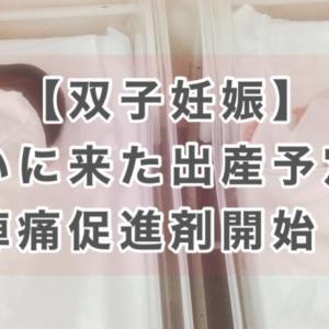 【双子出産レポ】ついに出産!?経腟分娩or帝王切開!?