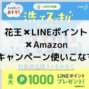 【34%お得に!】花王20%LINEポイントキャンペーンとAmazonキャンペーンを使いこなす!