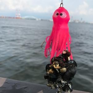 大阪湾「シーサイドコスモ」でタコ釣り体験!