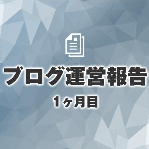 【ブログ運営報告】1ヶ月目のPVとポイ活の記録