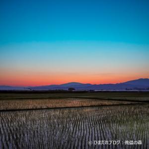 夕景/トワイライト