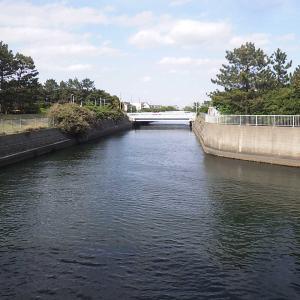 釣り馬鹿Gちゃん釣行記 草野水路2