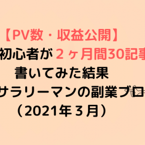 【PV数・収益公開】ブログ初心者が2ヶ月間30記事を書いてみた結果〜20代サラリーマンの副業ブログ〜(2021年3月)