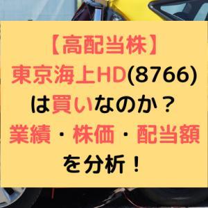 【高配当株】東京海上HD(8766)は買いなのか?業績・株価・配当額を分析!