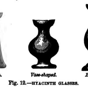 ヒアシンスのアンティーク・グラス