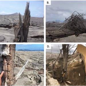 【タール火山】噴火後、砂漠化。