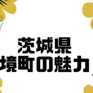 関東ふるさと納税1位の茨城県境町の魅力を紹介