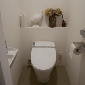 【捨て活】10年使われなかったトイレのサニタリーボックス
