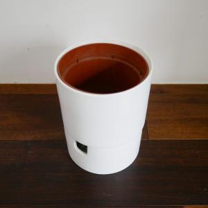 【捨て活】無印の底に水を入れられる鉢