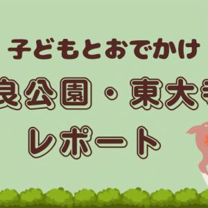 【観光・お出かけ】奈良公園と東大寺大仏殿レポート!子ども連れにオススメの時間帯は!?