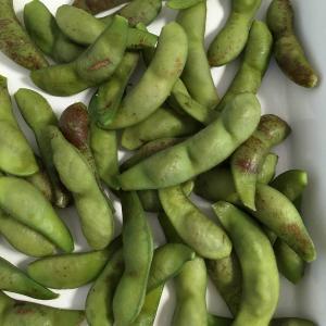 1年に1ヶ月だけの楽しみ。丹波黒枝豆(篠山産)を初めて食べる