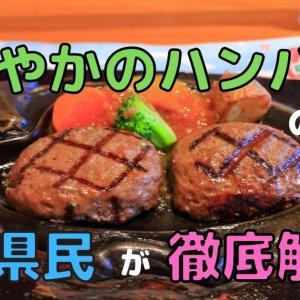 さわやかのハンバーグの魅力を静岡県民が徹底解説!