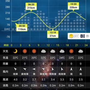 【碧南釣り広場】2021-6-12(土) 釣り日記