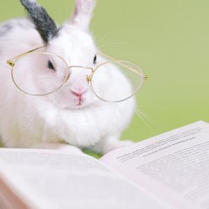 【雑記】皆さんにとって読書とはなんですか?