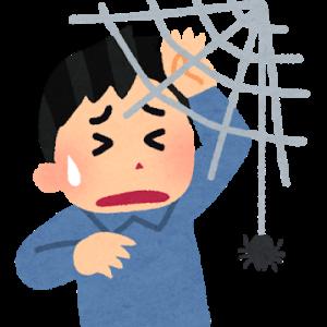 【雑学】蜘蛛は蚊を食べる数少ない身近な生き物