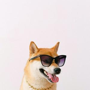 【雑学】犬が「ワンワン」は世界共通じゃない?