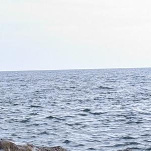 ★ ② 青物シーズン突入へ♬ ~ 江の島 裏磯から2021夏を始めよう(^▽^) ②