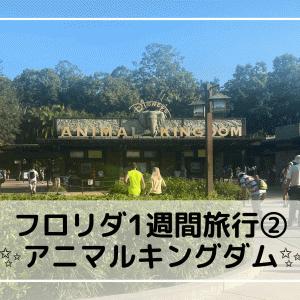 フロリダ1週間旅行記②【WDW・アニマルキングダムの感想!】
