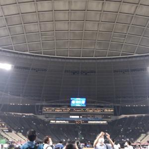 【西武vs日本ハム戦】観戦超初心者を再び野球場へお誘いする【平良の珍プレーも】
