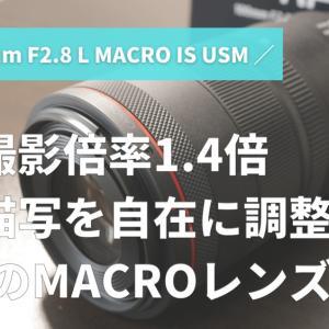 神マクロレンズ登場!ボケ描写を変えられる【Canon RF100mm F2.8 L MACRO IS USM】