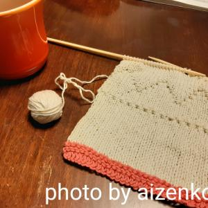 《趣味のハンドメイド》編み物/娘のニットベスト♪