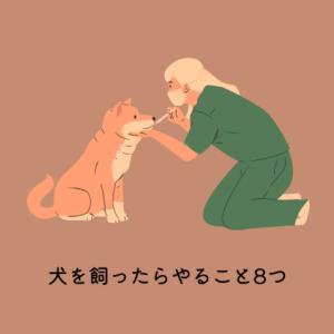 犬を飼ったらやること8つ【いつ、どこでやるのかを解説】