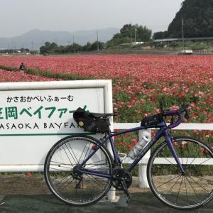 【Ride】 御嶽山ヒルクライム