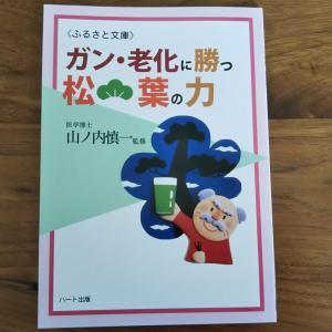 松葉の力 〜山ノ内慎一医学博士から学ぶ〜 松葉ジュースの作り方