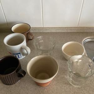 [実験] カップ類を洗わずに放置したらどうなる?