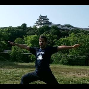 毎日15分ヨガ30日回目和歌山城から。15 Min. Daily Yoga for 30 days . Final from Wakayama Castle.