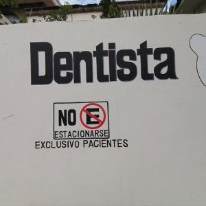 野鳥の訪れる歯医者さん